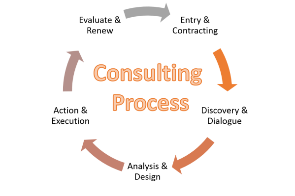 Consulting Process